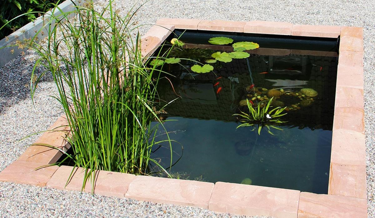 Wasserbecken kunststoff eckig for Gartenteich eckig anlegen